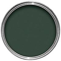 Hammerite Wild thyme Gloss Metal paint, 0.75L