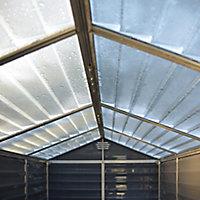 Palram Skylight 6x5 Apex Dark grey Plastic Shed