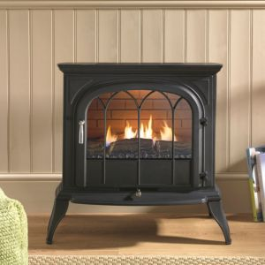 Stoves Electric Gas Amp Wood Burning Stoves
