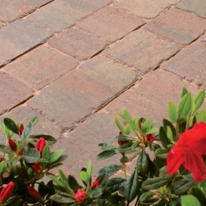 View Block Paving details