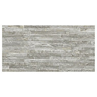Shaded slate Grey Matt 3D decor Stone effect Porcelain Wall tile, Pack of 6, (L)600mm (W)300mm