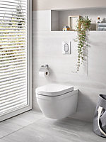 Solido Contemporary Wall hung Rimless Standard Toilet & cistern with Soft close seat