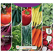 Vegetable collection Seed