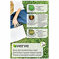 Verve Easy start coated Lawn seed 60m² 1.5kg