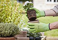 Verve Nylon Green Gardening gloves, Large