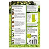 Verve Universal Lawn seed 60m² 1.5kg