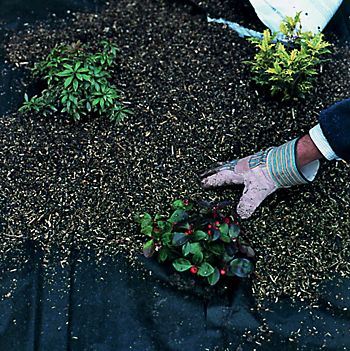 Flower bed with weed control fabric